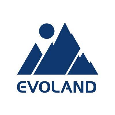 EVOLAND Plateforme Vibrante, 99 Niveaux, 5 Programmes, Affichage LCD, Télécommande, 2 Bandes Elastiques, Appareil de Massage avec Haut-parleurs, 150KG Capacité
